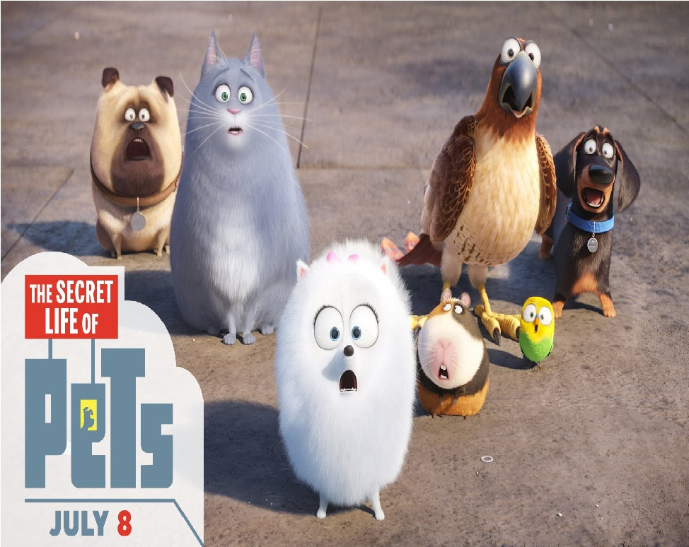 the secret life of pets gets approval for china release news